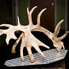 20141119_022a_Deer-Expo-Pittsfield-IL-AOG_pr1