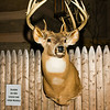 20141119_028a_Deer-Expo-Pittsfield-IL-AOG_pr1