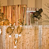 20141119_035a_Deer-Expo-Pittsfield-IL-AOG_pr1