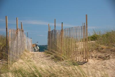 Beach Path Cape Cod MA