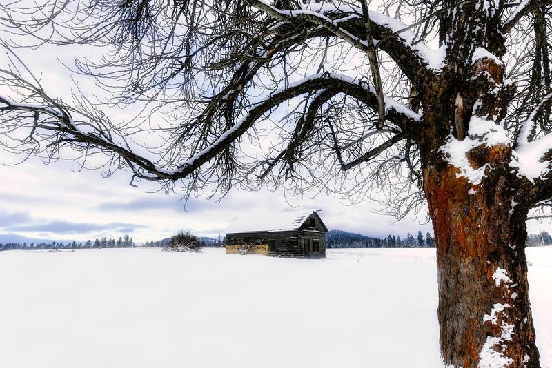 ~Winter's Embrace~