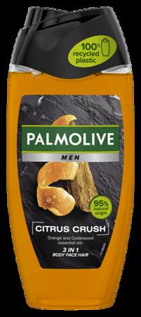 6000099PALMOLIVE dušigeel for Men Citrus Crush 250ml12*250ml8718951137677
