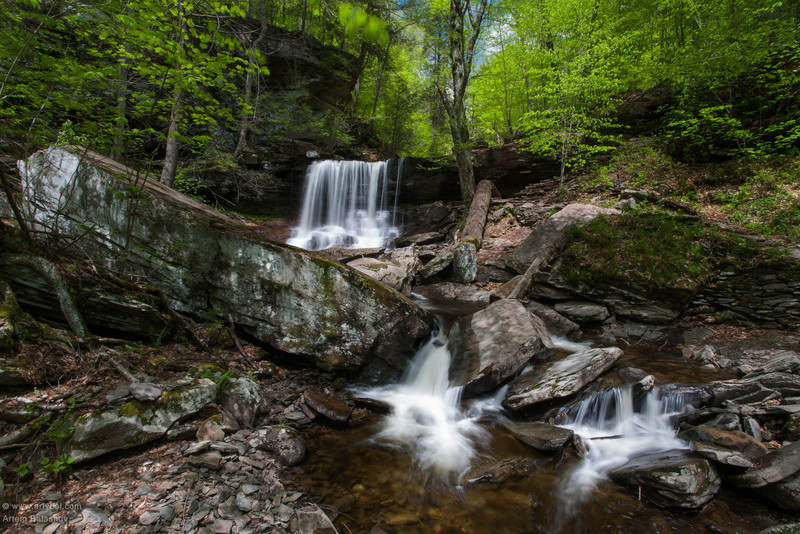 One of 20+ Waterfalls at Ricketts Glen State Park, PA, Spring 2013
