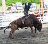 Central PA Rodeo, Huntingdon, PA, June 2013