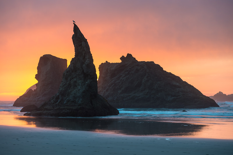 Sea Stack Sunset