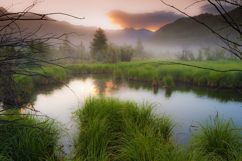 Pond Mist Rising