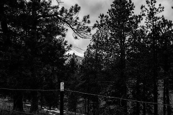Colorado-0521-007