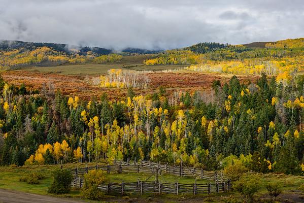 Fall colors along CR9, Colorado