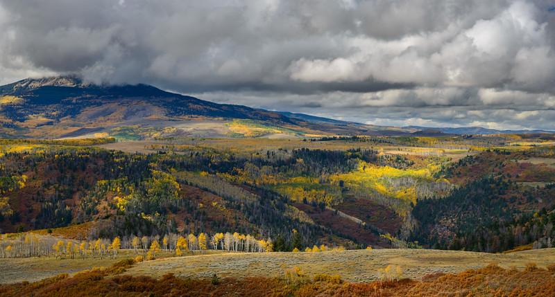 Fall colors along Last Dollar Road, Colorado