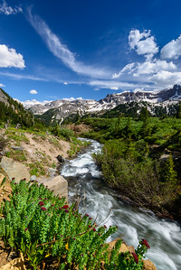 Sneffels Creek, at Yankee Boy Basin, Colorado