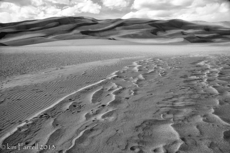 Wind forms.  Great Sand Dunes National Preserve, CO.