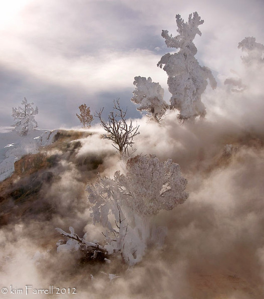 Mammoth Hot Springs at -20F.  Yellowstone National Park, WY.