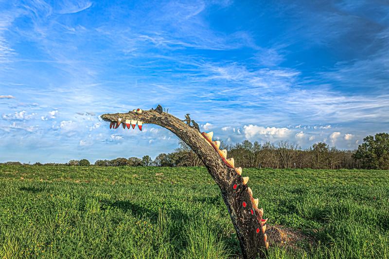 A Field  Serpent