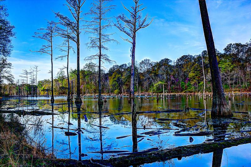 Deep Swamp promote  3 11