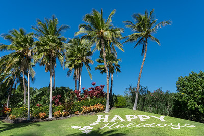 Happy Holidays in Hawaii ©2017 Ranae Keane-Bamsey Photography www.EMotionGalleries.com