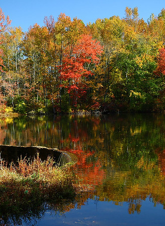 """Fall Runneth Over""  Selected Winner 11/2/2008 Category ""Theme-Fall Color and Harvest"" PhotographyVoice.com"