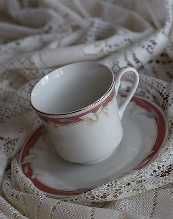 """Cup and Saucer""  Selected Winner 2/24/2009 Category ""Monthly Theme"" - ""Dynamic Duos"" PhotographyVoice.com"