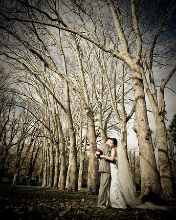 Fallen in Love, Fitzroy Garden, Melbourne
