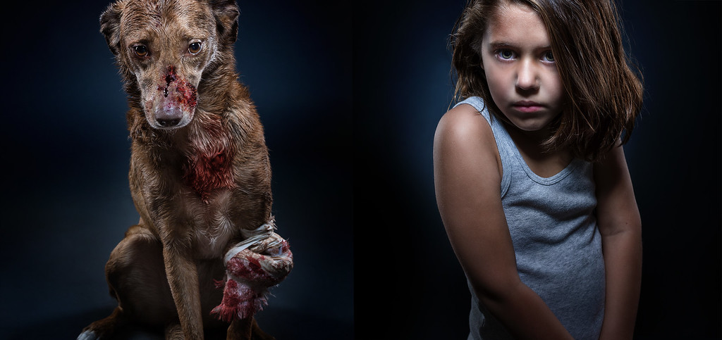 Portraits of intimidated dogs and children.
