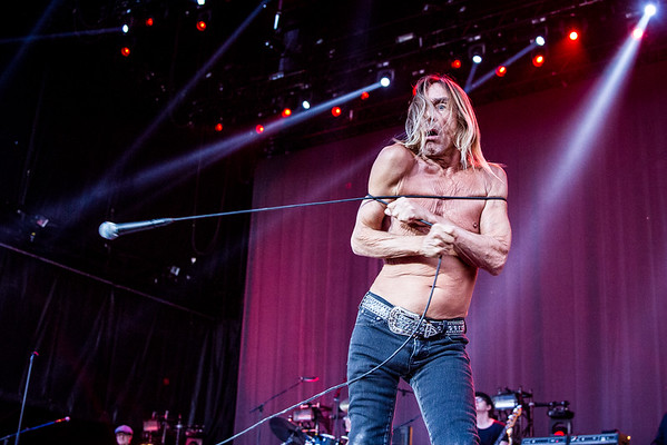Iggy Pop for Heavy Montreal / evenko