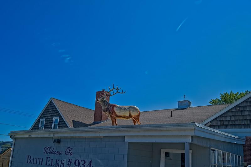 Bath Elks #934