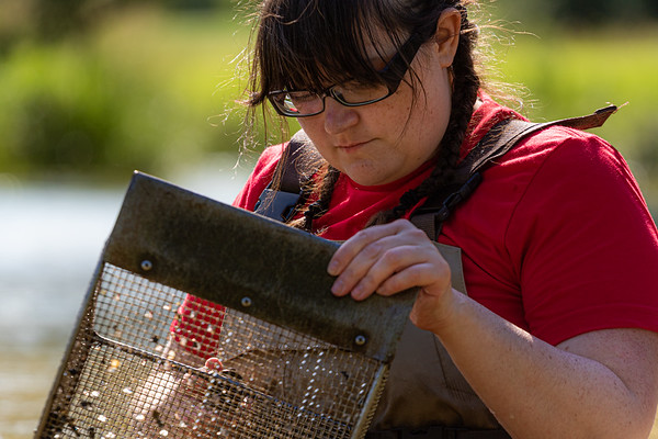 Mussel Panning