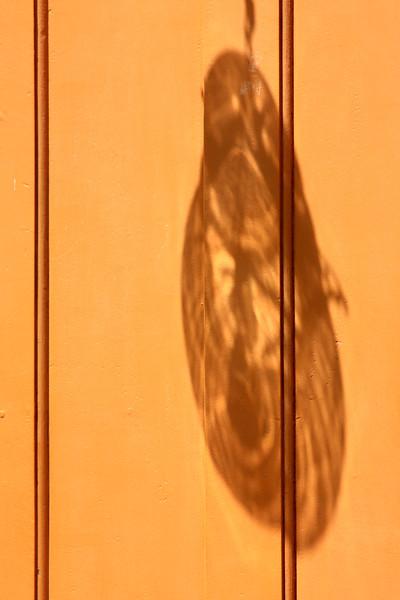 Translucidez Refletida I