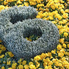 Flower number six sign as part of flower clock