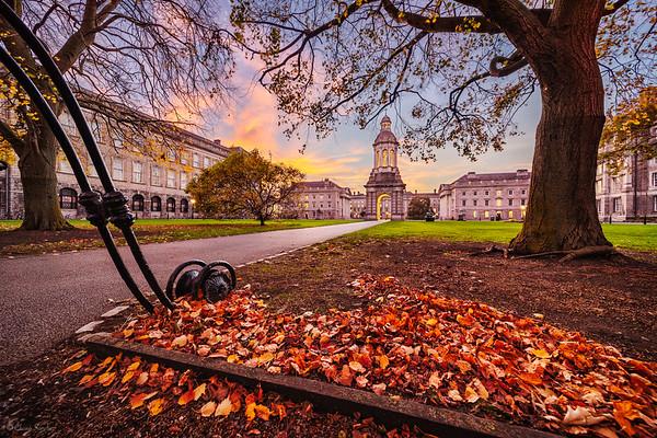 Historic Campus || Campus Histórico