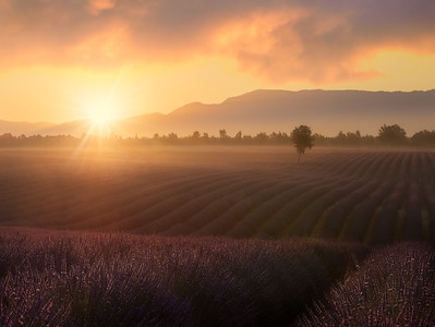 France glorious sunrise in Provence A739238