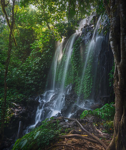 Bali Buyamala waterflaw daily light 7R26522