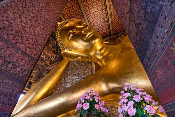 Golden Rest || Descanso Dorado