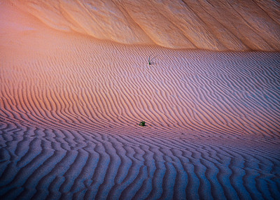 Lines and sand 7R41589