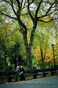 Couple sitting on a park bench surrounded by trees looking into each others eyes both wearing green shirts and jeans by tourists Alex Kaplan Photographer https://professionalheadshots.com