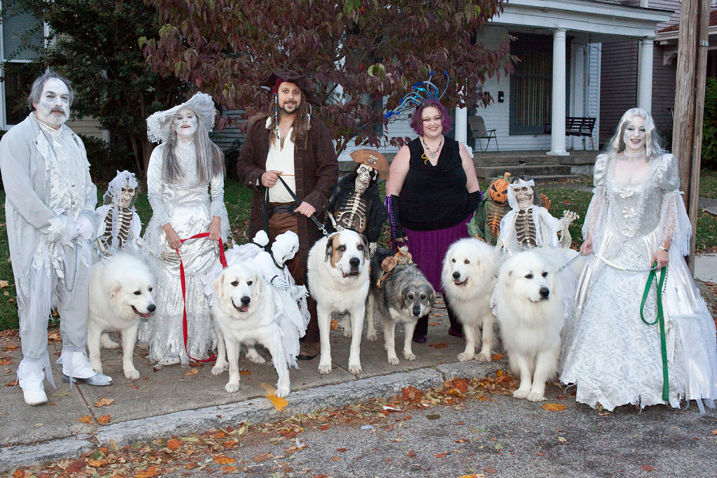 Members of the Fairleigh Pet Center drew attention with their mounted dogs and ghostly theme.