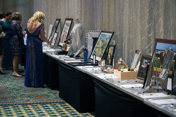 A silent auction was part of the Ferdinand's Ball on Thursday night at the Marriott Downtown. 5/5/16