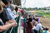 The Norton Cancer Institute's Survivor Celebration Day at Churchill Downs on Sunday afternoon offered race views from Millionaire's Row 4. 6/5/16