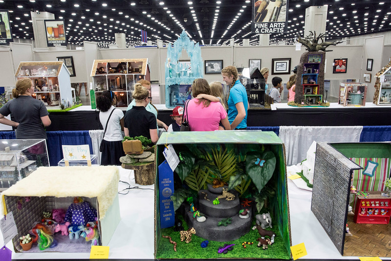 Dollhouses designed by various age groups across various categories draw the attention of guests to the Kentucky State Fair. 8/24/16