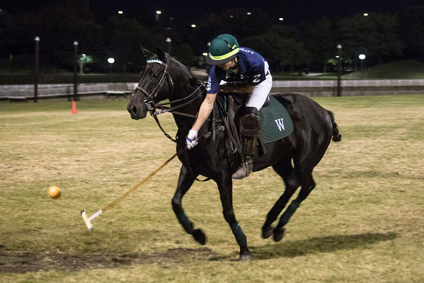 The action was on a smaller field of play than normal, but it was still exciting to watch as fans were treated to a free polo exhibition Thursday night at Waterfront Park. 10/13/16