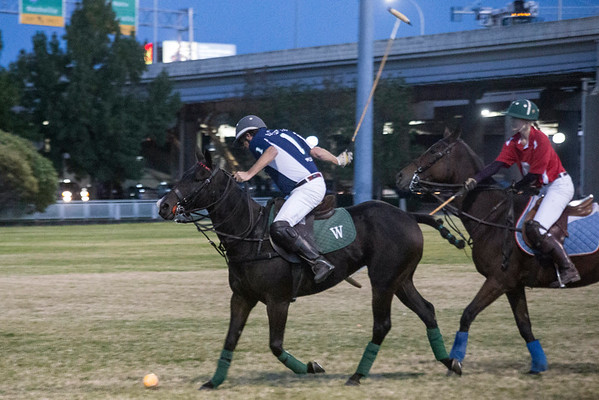 A scaled down version of polo was played at Waterfont Park on Thursday night with free admission to the public. 10/13/16