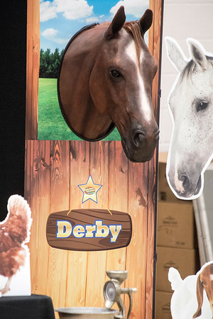 An animatronic horse named Derby was programmed to assist in teaching students at St. Matthew's Elementary about farming. 10/20/16
