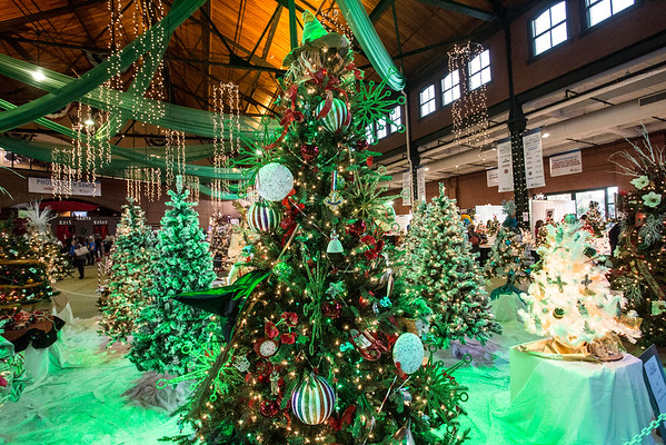 Hundreds of holiday trees were for sale to benefit the Norton Children's Hospital during the 2016 Festival of Trees & Lights. 11/11/16
