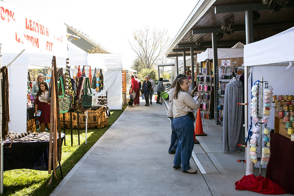 Indoor and outdoor exhibits made for plenty to see at the 5th Annual Fall Arts Show in La Grange. 11/13/16