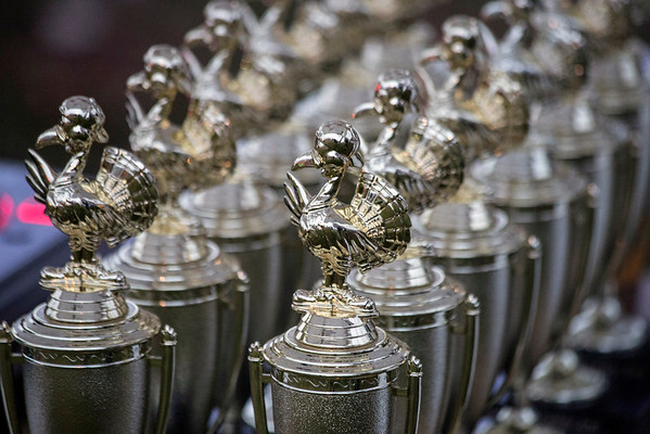 Trophies for winners of the 46th Annual Turkey Trot line a table near the starting line. 11/24/16