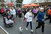 Walkers with dogs and baby strollers hung near the rear of the pack as the 5k course of the 46th Annual Turkey Trot began on Thursday morning. 11/24/16