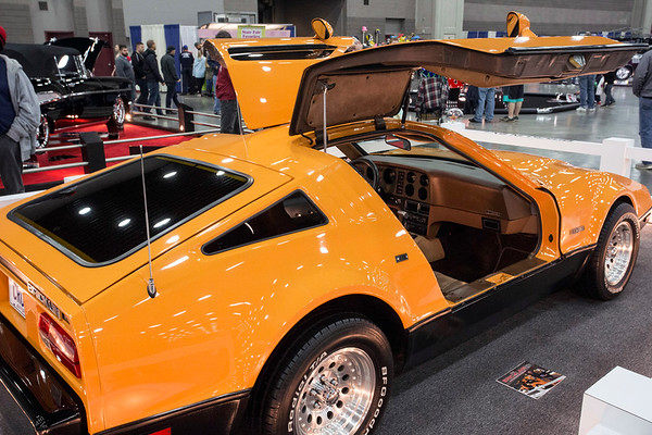 Fans of the Back to the Future movie franchise were able to see a Delorean DMC-12 up close at the Carl Casper's Custom Auto Show. 2/25/17