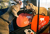 A treadmill for dogs keeps Weimaraners Quincy and Birdie healthy after sampling treats by owner Beth Schofield. 3/6/17
