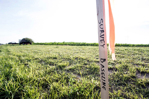 A survey baseline stake on Cromwell Lane marks where a pipeline will run directly through farmland in Cedar Grove. Several of the community's farmers have removed the stakes while harvesting crops. 6/20/17