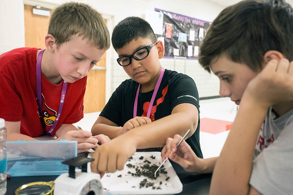 Nathan Hokey, Kadin Moran and Elliott Buckman examine a mound of excrement to study the diet of the barn owl during the Gear Up STEM Enrichment Camp. 7/12/17