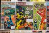 Rare comics were a huge draw at the FandomFest on Saturday. 7/29/17
